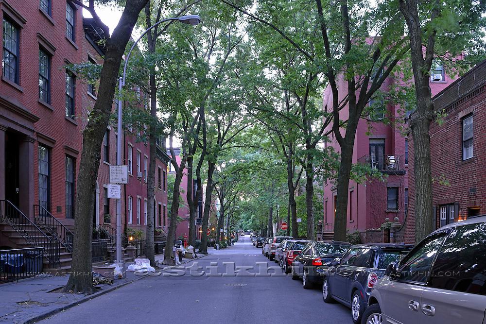 Green street in Brooklyn.