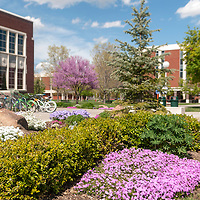 Campus Scenes, Brian Angers Photos