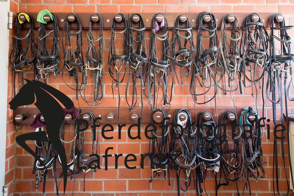 Gestütsportrait Gestüt Brodersdorf Lars Gehrmann<br /> Brodersdorf - Gestüt Brodersdorf 2016<br /> © www.sportfotos-lafrentz.de / Stefan Lafrentz