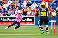 Max Holden of Middlesex takes a catch to dismiss Fakhar Zaman of Glamorgan<br /> <br /> <br /> Photographer Craig Thomas/Replay Images<br /> <br /> Vitality Blast T20 - Round 4 - Glamorgan v Middlesex - Friday 26th July 2019 - Sophia Gardens - Cardiff<br /> <br /> World Copyright © Replay Images . All rights reserved. info@replayimages.co.uk - http://replayimages.co.uk