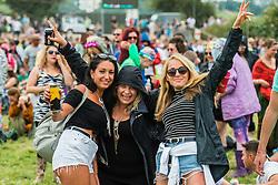 Fans of the Cribs. The 2015 Glastonbury Festival, Worthy Farm, Glastonbury.