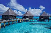 Luxury resort, Kia Ora,luxury bungalows on stilts in turquoise waters, Rangiroa,French Polynesia,Tuamotos
