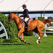 Show jumpint: the competitive sport of riding horses over a course of fences.<br />