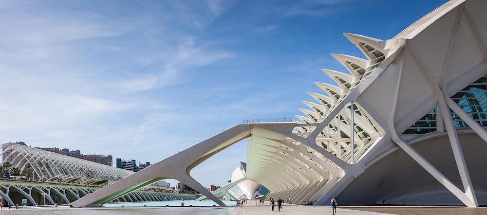 City of Arts and Sciences<br /> Santiago Calatrava Architect<br />  <br /> L'Hemisf&egrave;ric     El Museu de les Ci&egrave;ncies Pr&iacute;ncipe Felipe<br /> L'Umbracle     Ciudad Ciencias     L'&Agrave;gora     El Pont de l'Assut de l'Or<br />  <br /> Valencia Spain