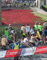 Prudential RideLondon Freecycle Riders pass the Tower of London and the installation in the moat Bloodswept Lands and Seas of Red, which marks the centenary of the outbreak of the First World War. Created by ceramic artist Paul Cummins, with setting by stage designer Tom Piper, 888,246 ceramic poppies will progressively fill the Tower's famous moat.<br /> Prudential RideLondon, the world's greatest festival of cycling, involving 70,000+ cyclists – from Olympic champions to a free family fun ride - riding in five events over closed roads in London and Surrey over the weekend of 9th and 10th August. <br /> <br /> Photo: David Ashdown for Prudential RideLondon<br /> <br /> See www.PrudentialRideLondon.co.uk for more.<br /> <br /> For further information: Penny Dain 07799 170433<br /> pennyd@ridelondon.co.uk <br /> Saturday 9th August 2014