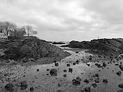 Low tide on the New England coast in Marblehead, Massachusetts