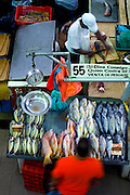 Fish vendor prepares fresh fish for a customer in his stall at the Fish Market (El Mercado del<br />