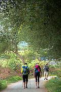 Pilgrims on the Camino de Santiago PIlgrim's Way to Santiago de Compostela in Galicia, Spain