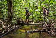Manaus, Amazonia, Brazil, November 2018.  Exploring the Amazone Rainforest with Leo and Vanessa of Amazon Emotions. The Amazone river and Rio Negro connect the small rain forest communities that dot the region. River Amazon (Portuguese: Rio Amazonas; Spanish: Río Amazonas) of South America is the largest river in the world by volume, with total river flow greater than all the other top ten largest rivers flowing into the ocean combined. The Amazon drains an area of some 6,915,000 square kilometres (2,670,000 sq mi), or some 40 percent of South America. Photo by Frits Meyst / MeystPhoto.com