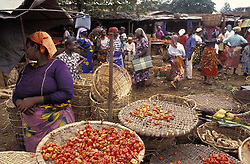 September 29, 2009: Vegetable Market; Nigeria (Credit Image: © James Morris/Design Pics via ZUMA Wire)