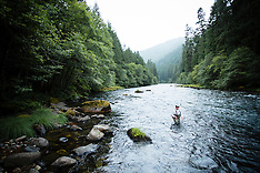 North Umpqua River Photos - Fly fishing, scenic, stock images