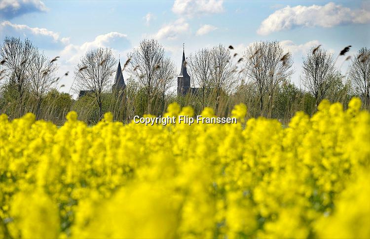 Nederland, the Netherlands, Horssen, 20-4-2016Veld met bloeiend geel koolzaad .FOTO: FLIP FRANSSE