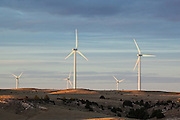 Green Energy, Northern Colorado