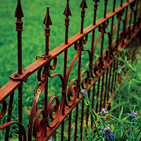 Sometimes all that remains of ancient cemeteries or old home places is a decorative iron fence.