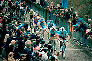 Entering the Forest of Arenberg, Tom Boonen sits in 2nd place in the peleton, Paris Roubaix professional cycling race classic 2012 before attacking and winning for the fourth time. The 256.5km race runs from Compiègne, near Paris, to Roubaix, northern France, crossing 51.5km of pavé - ancient cobblestones, along the way.