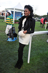 SHINGAI SONIWA at the 2012 Hennessy Gold Cup at Newbury Racecourse, Berkshire on 1st December 2012