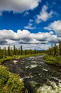Brushkana Creek, Denali Highway, summer, afternoon