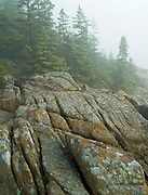 The well known Otter Cliffs region of Acadia National Park, Maine, is a popular attraction for photographers and tourists alike.