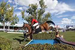 Philippaerts Olivier, (BEL), Challenge vd Begijnakker<br /> CSIO 5* Spruce Meadows Masters - Calgary 2016<br /> © Hippo Foto - Dirk Caremans<br /> 11/09/16