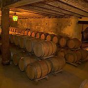 South America, Uruguay, Canelnones, Montevideo, Bodegas Carrau, wine aging in oak barrels