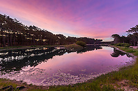LAGUNAS Y BOSQUE DEL BARRIO CERRADO DE VILLAROBLES, PINAMAR, PROVINCIA DE BUENOS AIRES, ARGENTINA (PHOTO BY © MARCO GUOLI - ALL RIGHTS RESERVED. CONTACT THE AUTHOR FOR IMAGE REPRODUCTION)