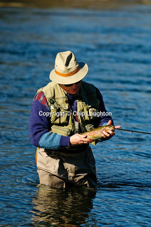 fly fishing stock photo image