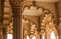 An architectural detail of the arches and columns in the Diwan I Am or Hall of Public Audience in Agra Fort, Agra, India.