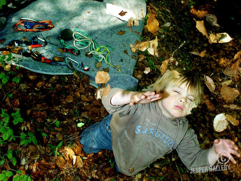Skovens dag 2006