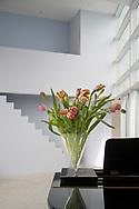 Mart van Schijndel vaas vase in Mart van Schijndelhuis. Iconic house