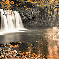 autumn leaves and waterfall backdrop