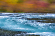 A long exposure and intentional camera movement combine to create a sense of color in motion from the aqua-blue waters of Oregon's Metolius River flowing past autumn huckleberry and vine maple on the river bank near Wizard Falls.