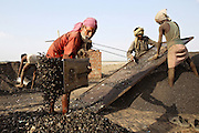 Labourers are collecting and dividing the thin black dust obtained by boiling leather scraps in one of the many dumping and burning grounds near the tannery area of Jajmau, Kanpur, Uttar Pradesh. This dust is the first process to fertilisers and chicken food.