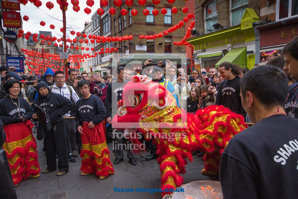 Visiting all the restaurants, one after the other, the dragon brings traders and their customers good luck for the following year as Thousands of Londoners help the capital&rsquo;s Chinese population celebrate their new year, The Year of The Monkey in Chinatown, London.<br /> Picture by Paul Davey/Focus Images Ltd +447966 016296<br /> 14/02/2016