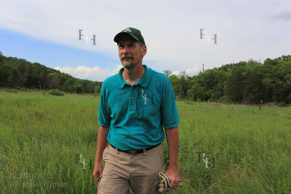 Man wades through marshy grassland at Grasshopper Hollow, the largest, most significant fen complex in unglaciated North America; Reynolds, Missouri.