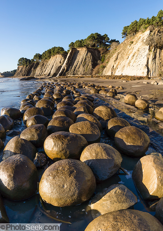 Bowling Ball Beach, Schooner Gulch State Park, south of Point Arena, Mendocino County, California, USA. Pacific Ocean waves have weathered coastal bluffs (steeply tilted beds of Miocene Galloway Formation, Cenozoic Era mudstone) to expose spherical sandstone concretions resting on bowling lanes. Concretions form because minerals of like composition tend to precipitate around a common center. The panorama was stitched from 4 overlapping photos.