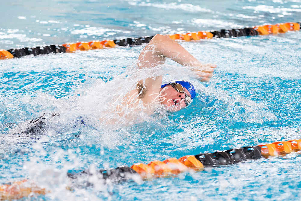 December 15, 2015.  <br /> Swim at Woodberry, WFS, Madison, Orange