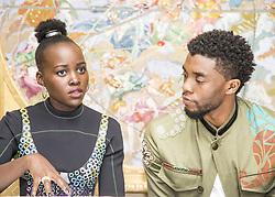 January 30, 2018 - Hollywood, CA, USA - Lupita Nyong'O  and Chadwick Boseman star in the movie Black Panther (Disney)Marvel (Credit Image: © Armando Gallo via ZUMA Studio)