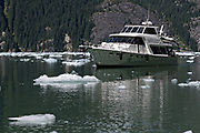 A private motor yacht navigates around small ice bergs known as bergy bits floating in LeConte Bay near the LeConte Glacier in Petersburg Island, Alaska. The icebergs calve off the nearby LeConte Glacier which is the southernmost tidewater glacier of the Northern Hemisphere.