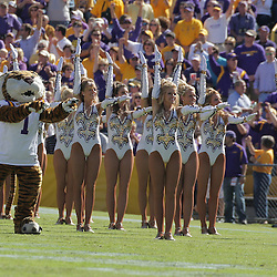25 October 2008:  The LSU Gold Girl dance team and the Tigers mascot perform on the sideline during the Georgia Bulldogs 52-38 victory over the LSU Tigers at Tiger Stadium in Baton Rouge, LA.
