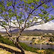 BAHIA DE JUAN GRIEGO - MARGARITA - VENEZUELA
