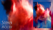 La Danse du Diable -  The Devil's Dance | Abstract Art of the Female Form created by artist Stephen Moody of Scottsdale, AZ.  Large wall art for businesses, hospitality industry, interior designers and individual collectors.