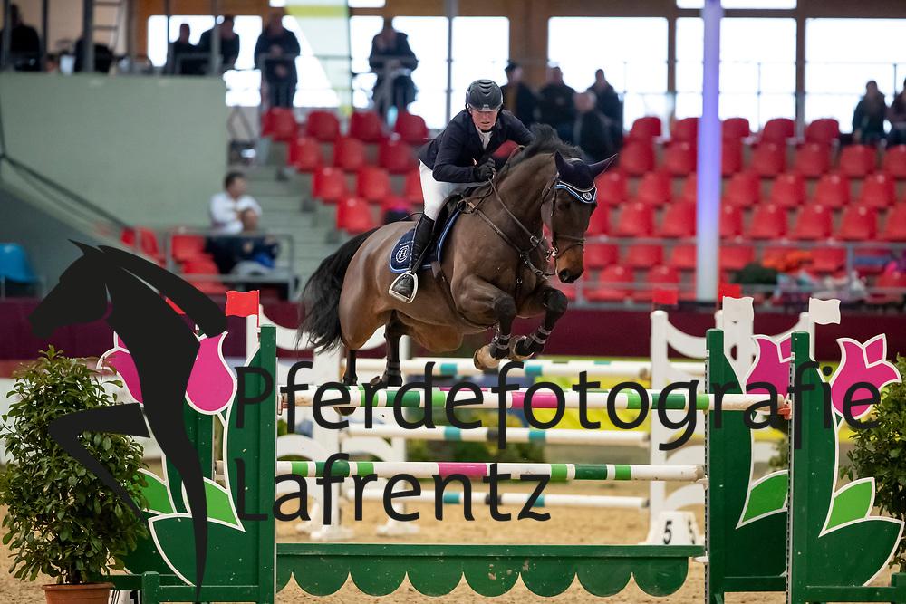 DELFS Henry (GER), Cordano D<br /> Neustadt-Dosse - CSI 2019<br /> Preis der Hengststation Maas J. Hell GmbH<br /> Large Tour<br /> 11. Januar 2019<br /> © www.sportfotos-lafrentz.de/Stefan Lafrentz