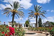 Israel, Mount Carmel, Ramat Hanadiv gardens near Zichron Ya'acov