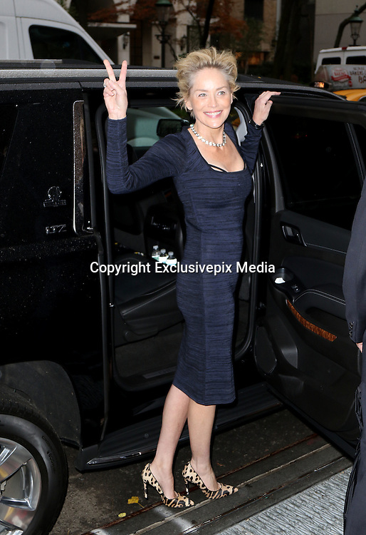Nov. 19, 2015 - New York City, NY, USA -<br /> <br />  Actress Sharon Stone made an appearance at The View on November 19 2015 in New York City<br /> &copy;Exclusivepix Media