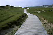 Walkway to the beach, Ireland