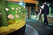 Patrons enjoy a tour through the Cleveland Aquarium on Monday, Feb. 6, 2012