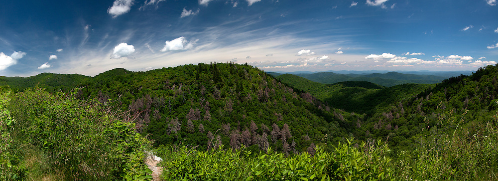 Panorama of view from southern section of Blue Ridge Parkway in North Carolina in June.
