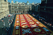 Brussels, Belgium. Grand Place. Tapis des Fleurs (Flower Carpet), every second year in August.