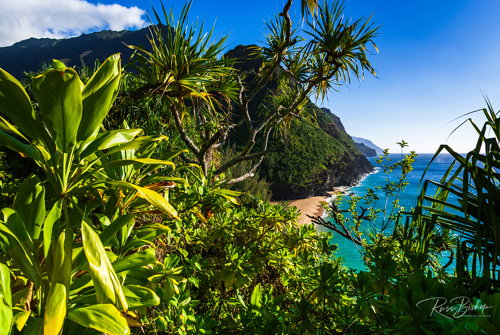 Hanakapi'ai Beach from the Kalalau Trail, Na Pali Coast, Island of Kauai, Hawaii USA