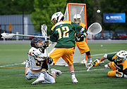 Adelphi University vs. LIU Post in the NCAA Division II Men's Lacrosse Semifinals at Adelphi University on Sunday, May 18, 2014, in Garden City, N.Y. Photo by Kathy Kmonicek
